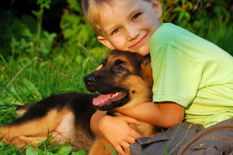 21 причина завести собаку