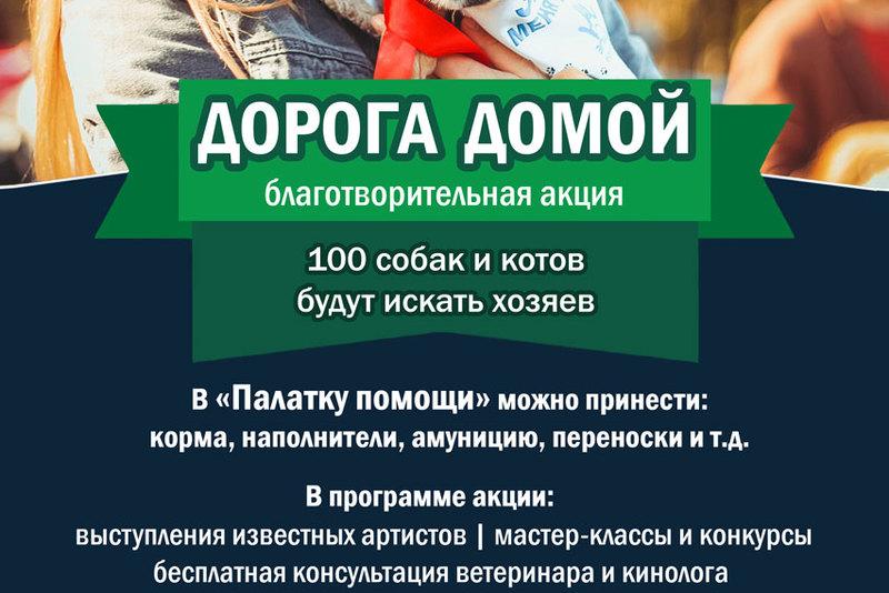 В парке «Тиволи» пройдет благотворительная выставка «Дорога домой»
