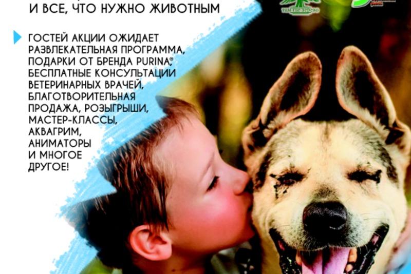 23 июня состоится благотворительное мероприятие «Дорога домой»